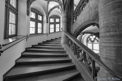 Inside Munich's New City Hall (tomaso.belloni) Tags: blackandwhite building city column house nobody photography germany munich staircase stair
