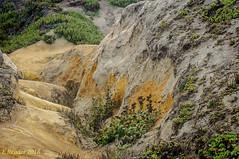 Coastside Colors (Greatest Paka Photography) Tags: color coast nature sandstone davenportbluffs davenport