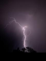 Lightning in Tucson on August 6 2018 (Distraction Limited) Tags: lightning tucson arizona arizonathunderstorms thunderstorms storms azwmonsoon2018 azwmonsoon lightning20180806 explore