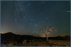 Perseids over the Mojave 2097+19 (maguire33@verizon.net) Tags: milkyway mojavedesert perseids lightpollution meteorshower nightsky stars