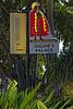 _MG_8901_DxO (carrolldeweese) Tags: kona hawaii kailuakoha kailua hulihee palace