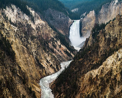 Lower Yellowstone Falls and the Grand Canyon of the Yellowstone (Kurt Lawson) Tags: artistspoint copyrighted grandcanyon grandcanyonoftheyellowstone lower mist mountains national nationalpark park river trees waterfall wy wyoming yellowstone yellowstonefalls yellowstonenationalpark yellowstoneriver unitedstates