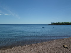 2018-06-13 Grand Marais 1 (s.kosoris) Tags: skosoris pentaxoptiowg1 wg1 pentax grandmarais geese canadageese canadagoose goose water lake lakesuperior superior beach