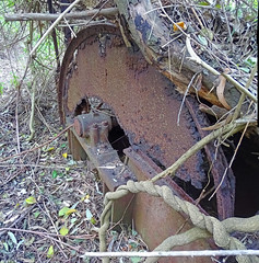 Ruin_33 (Tony Markham) Tags: mine mining coal coalmine coalmining old ruins ruin abandoned disused wollongong illawarra bush bushwalk escarpment