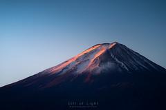 Peak on Fire (Gift of Light) Tags: fuji fujisan mtfuji mount mountain volcano japan sunrise sunlight morning day nature naturephotography natural landscape landscapephotography tele sky sonyalpha alpha sony sonya9 a9 sonyfe70300mmf4556goss fe g oss 70300mm 703004556 455670300 f4556