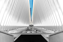 Path to PATH (Amar Raavi) Tags: oculus skylight wtc worldtradecenter freedomtower dawn nyc newyorkcity cityscape architecture transportation hub path station train white manhattan lowermanhattan downtown unitedstates usa building outdoors