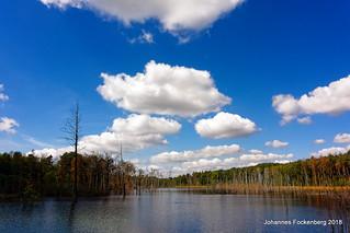 Himmel über der Heide