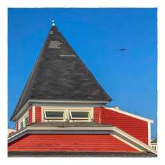 Flyover (Timothy Valentine) Tags: 2018 fbpost 0718 roof bird sky vacation hrsw kennebunkport maine unitedstates us