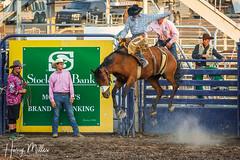 Air Travel (HarryMiller002) Tags: rodeo horse cowboy missoulastampede missoula montana bronc