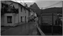 La Vall Blanca, Riells del Fai (el Vallès Oriental) (Jesús Cano Sánchez) Tags: elsenyordelsbertins xiaomi redmi note4 catalunya cataluña catalonia barcelonaprovincia valles vallesoriental cinglesdeberti lavalldeltenes biguesiriells riellsdelfai rural senderisme senderismo hiking bn byn bw