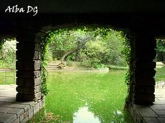Soportales en Lago de Jardín de Serralves, Oporto (Portugal) (albadgr) Tags: oporto porto portugal jardín jardines garden gardens lago lagoon lake agua water nature naturaleza serralves