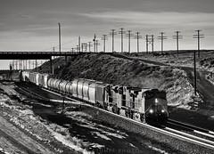 Peru Hill, Wyoming (rolfstumpf) Tags: usa wyoming peru unionpacific up7213 bnw monochrome codeline telegraph trains freighttrain winter railway railroad desert olympus