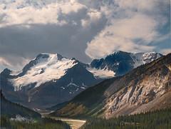 Columbia Glacier Field, Jasper National Park (marvhimmel) Tags: general bristishcolumbia montana flatheadlake jaspernationalpark canada