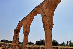IMG_0403 (Nai.Sass) Tags: lebanon trave tyre sour anjar baalback ruins roman byzantine middle east temples summer vacation sea amateur