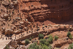 2018-4491 (storvandre) Tags: morocco marocco africa trip storvandre telouet city ruins historic history casbah ksar ounila kasbah tichka pass valley landscape