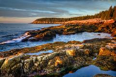 Acadia National Park, Maine (Greg from Maine) Tags: acadianationalpark acadia maine sunrise ottercliff coast ocean seascape barharbor barharbormaine waves mountdesertisland seaweed tidepool morning landscape