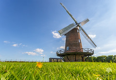Wilton Windmill (M.Zeeshan) Tags: wiltshire uk england greatbedwyn windmill canon canon5dmarkiii canonef1740mmf4lusm nature landscape clouds floormill unitedkingdom august summer blue green britishhistory village british countryside flowers yellow