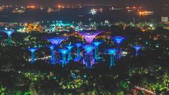 Hotel Room Views 3 (brykyoung) Tags: singapore garden night lights marina bay summer 2018 asia