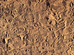 We walk (fotodairies) Tags: walkway roadtrip usa loveholidays desert sand foitstrpsinthesand