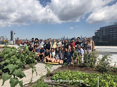 Students at Brooklyn Grange