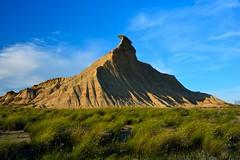 BARDENAS  (NAVARRA) (alfredo2057) Tags: alfredo azul senderismo sol paredes flores vegetacion nikon luz navarra nubes planta color monte cielo campo