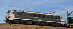 Trn-8432 (Tinico Jones) Tags: tren renfe serie251 serie251derenfe mercancias locomotora