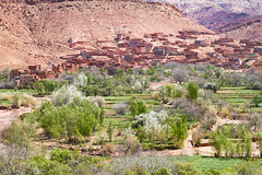 2018-4521 (storvandre) Tags: morocco marocco africa trip storvandre telouet city ruins historic history casbah ksar ounila kasbah tichka pass valley landscape