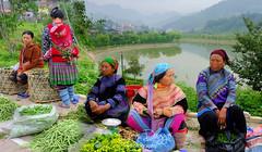 DSCF6421b (Steve Daggar) Tags: vietnam vietnamese markets market ethnic hilltribe hmong bacha bachamarket portrait candid