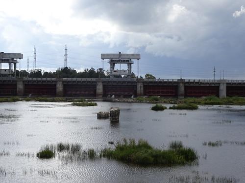 Narva veehoidla tamm