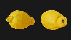 Lemon 3D model (ZB-Vision) Tags: lemon 3d model citrus citron yellow realistic obj c4d 3ds fbx limon rutaceae asia evergreen ellipsoidal juice pulp rind zest acid sour lemonade meringue