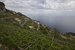 Flickr_Costiera_Amalfitana_Sentiero_Positano_Capri_05_2018_IMG_9008 (Roberto Bombardieri) Tags: campania costiera amalfitana italia italy italian sentiero degli dei sentierodeglidei vigne