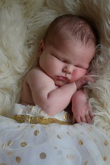 2018-08-06_06-24-33 (tiffanycsteinke) Tags: sophie newborn newbornphotography infant babygirl baby