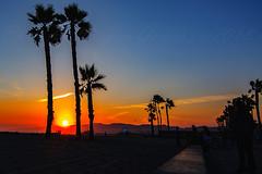 33 (morgan@morgangenser.com) Tags: sunset red orangeyellow blue pretty cloud silhouette sun evening dusk palmtrees bikepath sand beach santamonica pacificpalisades beautiful black dark cement amazing gorgeous inawe ca photobymorgangenser