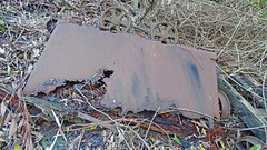 Ruin_28 (Tony Markham) Tags: mine mining coal coalmine coalmining old ruins ruin abandoned disused wollongong illawarra bush bushwalk escarpment