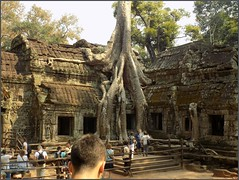 Angkor, Ta Prohm Temple Tree 20180202_134259 DSCN2546 (CanadaGood) Tags: asia seasia asean cambodia siemreap angkor taprohm temple building architecture archaeology tree people person canadagood 2018 thisdecade color colour buddhist hindu khmer