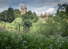 Spire of Hereford Cathedral across the Wye.jpg (Stephen B Jessop) Tags: herefordcathedral trees olympus hereford flowers rosebaywillowherb sky clouds 2018 em5mk2 stephenbjessop riverwye