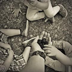 Bitte zugreifen (Uli He - Fotofee) Tags: ulrike ulrikehe uli ulihe ulrikehergert hergert nikon nikond90 fotofee brombeeren garten hände kinder leckereien