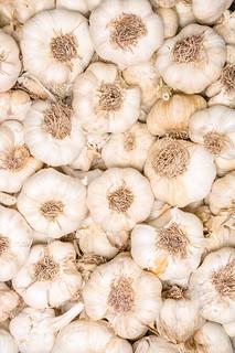 Garlic in bundles dried