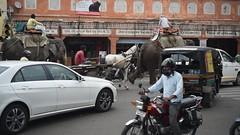 Jaipur (rickymulan) Tags: jaipur pinkcity rajasthan india indi indian april 2018 nikond750 d750
