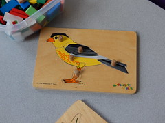 DSCN2149 (mestes76) Tags: 092417 duluth minnesota duluthchildrensmuseum puzzles birds