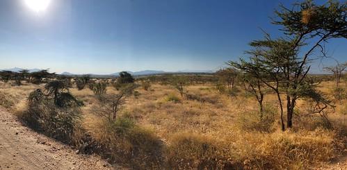 1024ex2  landscape of Kenya