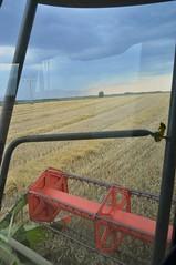 DSC_8948 (anetaležáková) Tags: summer sunset summerharvest sunnydays harvest agriculture agriphoto czechagri caseihpuma case casepuma165 caseoptum casepuma200 claas claaslexion newholland