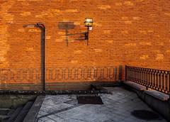 Horizontal (229/365) (Walimai.photo) Tags: brick ladrillo wall pared sombra shadow horizontal benavente zamora spain españa lumix lx5 panasonic caminodesantiago víadelaplata