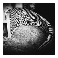 Zebra (pusiga) Tags: pécs hungary zebra victorvasarely museum opart painter abstract blackwhite art monochrome
