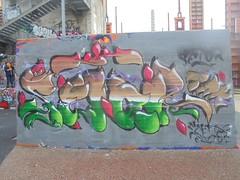279 (en-ri) Tags: feto fetor arrow nero lilla verde marrone parco dora torino wall muro graffiti writing