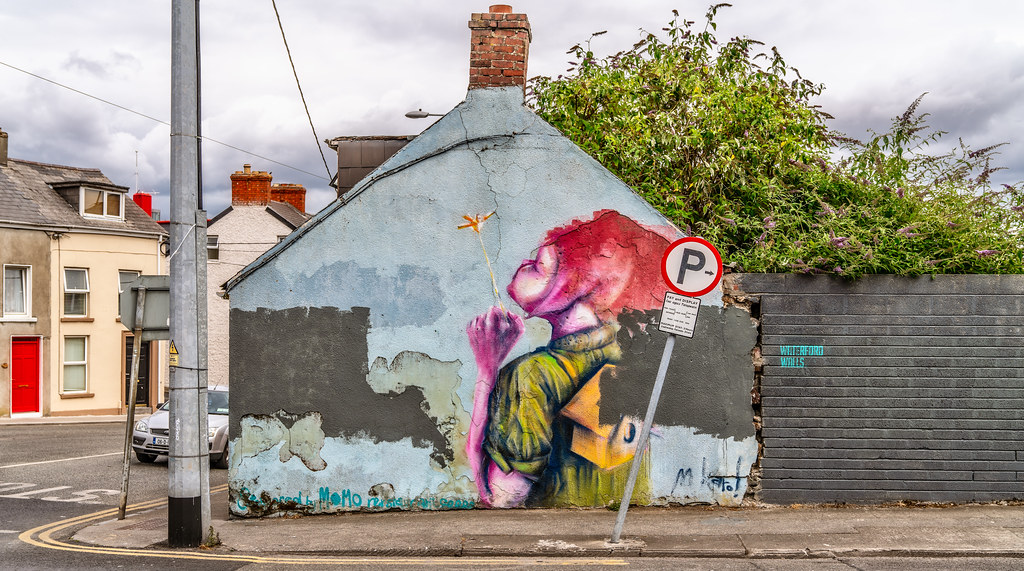 STREET ART BY MAGDALENA KAROL WHO IS FROM POLAND BUT LIVING IN WATERFORD [SPONSORED BY MOMO RESTAURANT]-142729