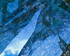 Broken Glass 2 º (CactusD) Tags: detail texture light glass glasshouse colour blue nikon d800e movements fx uk unitedkingdom gb united kingdom greatbritain great britain derbyshire england fuji film fujifilm fujichrome velvia velvia50 5x4 4x5 85mmf28pce tilt shift tiltshift 85mm 85pce digitized linhof technikardan tks45 s45 nikkorm300mmf9 nikkor 300mm f9 largeformat botany horticulture