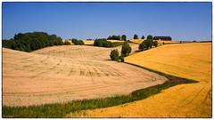 Same Scenery New View (Krogen) Tags: norge norway norwegen akershus romerike nannestad landscape landskap krogen fujifilmx100