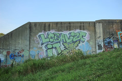Legalize It By Flip (NJphotograffer) Tags: graffiti graff new jersey nj legalize it flip tbs crew marijuana weed 420