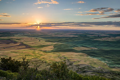 Sunset on Steptoe Butte (BP3811) Tags: 2018july colfax farmland rollinghills steptoebutte wheatfields landscape scenic sunset washington